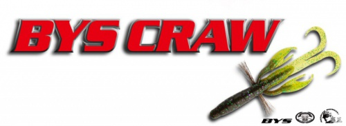 Bait Breath - BYS CRAW 2,5