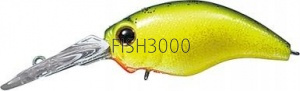 EVERGREEN - WILD HUNCH RATTLE-IN #86 LIME CHART DAZZLER