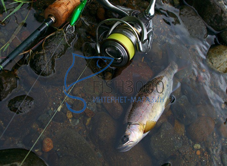Воблер Daiwa Wise Minnow 50FS