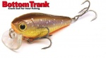 SKAGIT DESIGNS - Bottom Trank 36 S